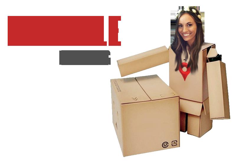 ProBot Danielle H