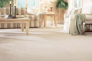 internet marketing for carpet cleaning